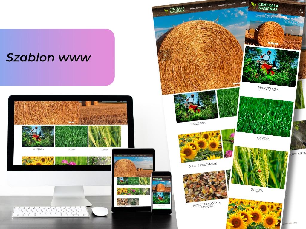 Projekt-szablony-strony-internetowej